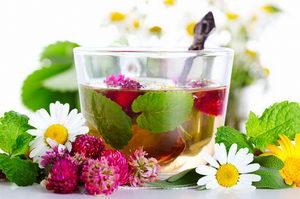 Травы при простуде и гриппе: классификация, механизм действия