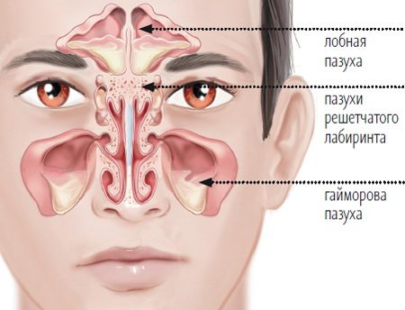 Пазухи около носа