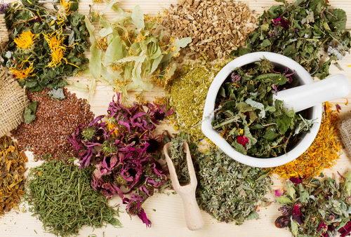 Травяные чаи: рецепты и рекомендации